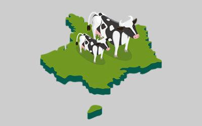 Alimentation animale : les bénéfices de TRADILIN pour les vaches laitières