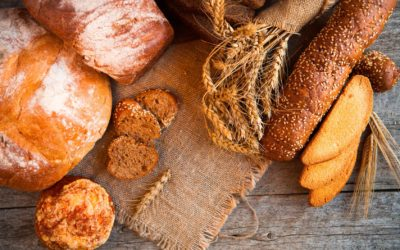 Alimentation humaine : l'effets de la consommation de pain à la farine Tradilin®