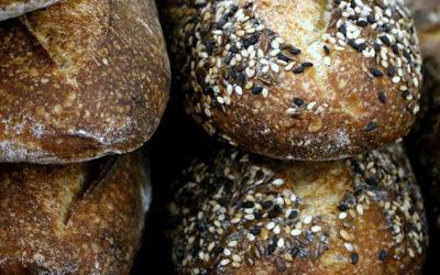 Alimentation humaine : teneur en Oméga 3 pain à la farine de lin Tradilin®