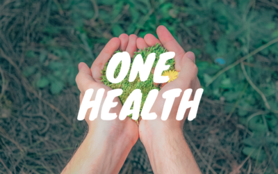 One Health … Santé unique